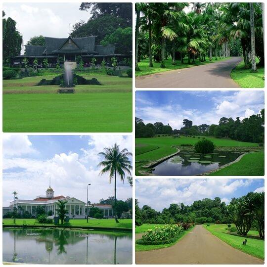 Kebun Raya Park in Bogor