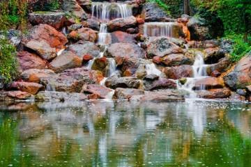 Eden Nature Park, Wasserfall