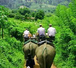 Elefantenreiten durch den Dschungel von Koh Lanta