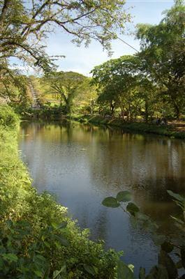 Angelegter Fluss im National Park