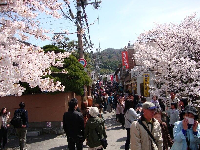 Der Philosophenweg in Kyoto zur Kirschblüte