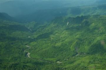 Regenwald - Indonesien
