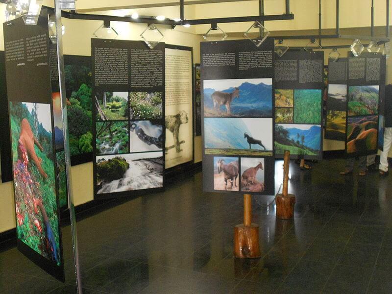 Das Eravikulam Museum