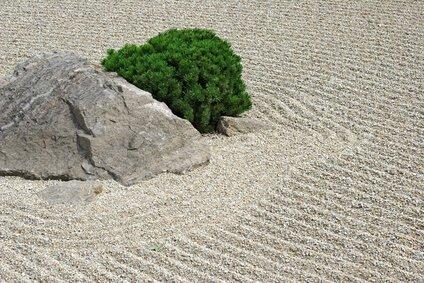 Zen-Garten in Japan
