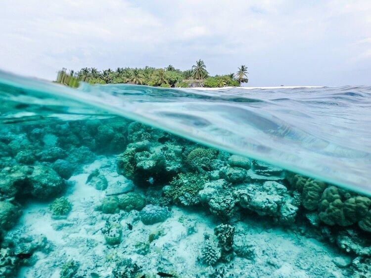 Tauchen diving auf gili air